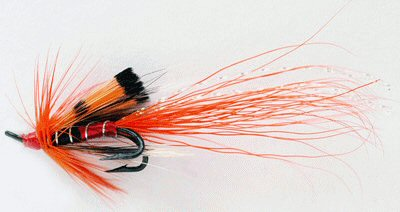 Salmon Fishing Tackle Fly