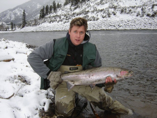 winter run Steelhead Salmon