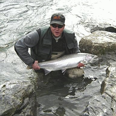 Male, buck, Steelhead