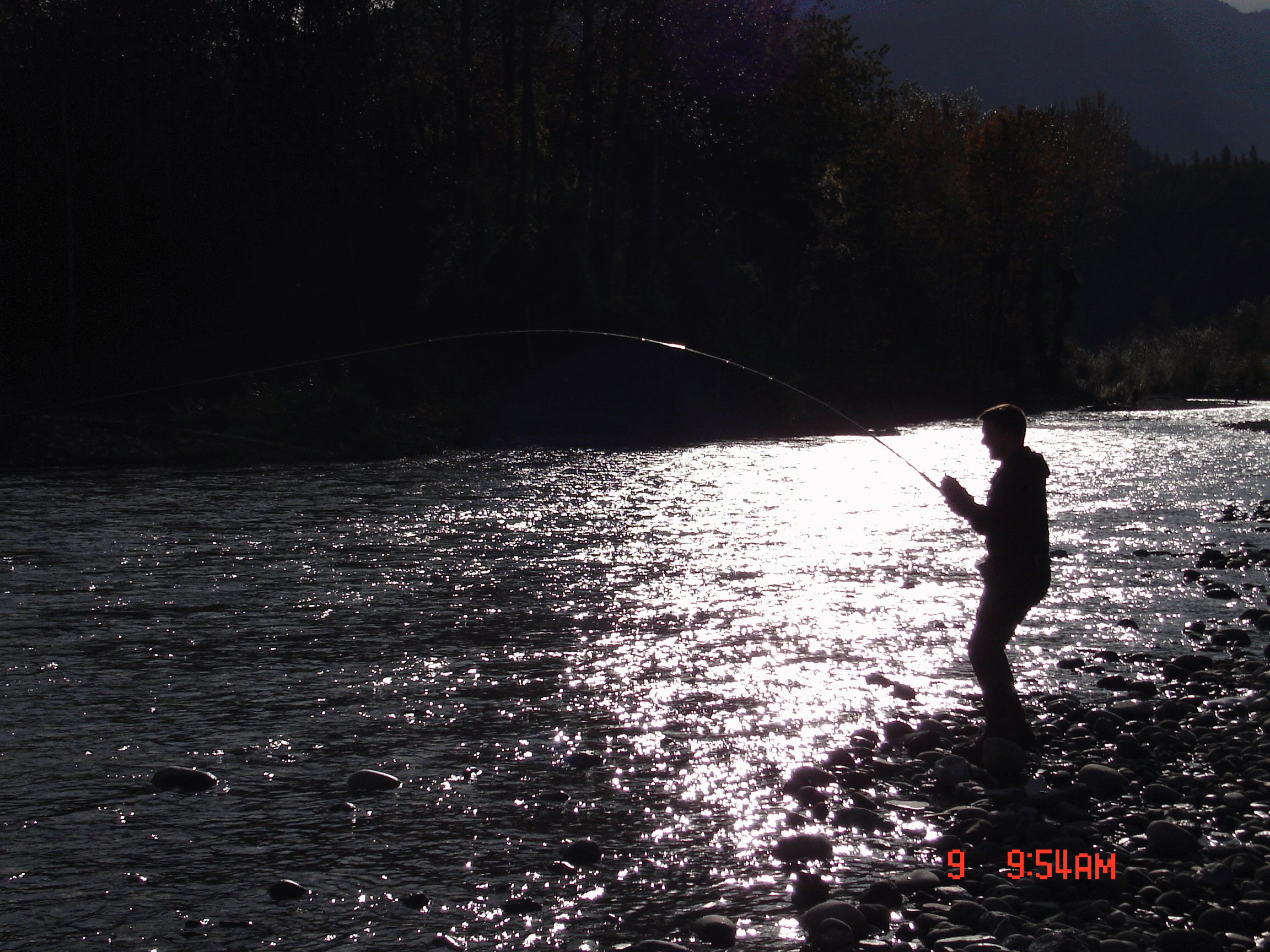 Chum salmon fishing in the evening.